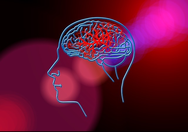 脳卒中リハビリと姿勢制御➁~網...