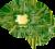 脳 電子回路